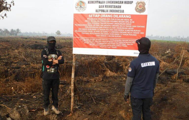 KLHK Segel 62 Lahan Perusahaan Yang Terbakar