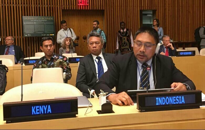 Indonesia Sampaikan Keberhasilan Penurunan Deforestasi di Pertemuan PBB
