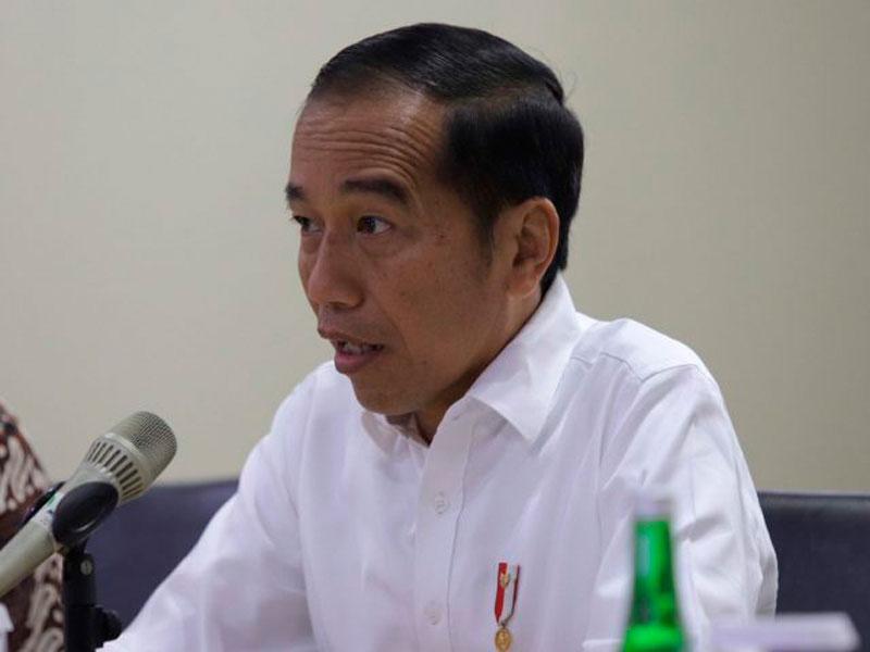 Tahun Depan, Jokowi Bangun Istana Presiden di Papua