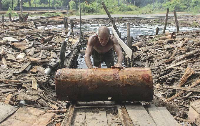 Lawan Perusahaan Demi Sagu dan Hutan