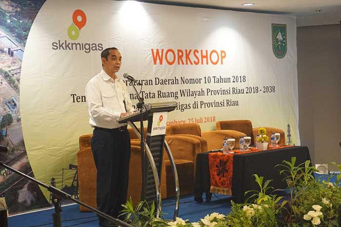 SKK Migas Perwakilan Sumbagut Taja Workshop RTRW Riau