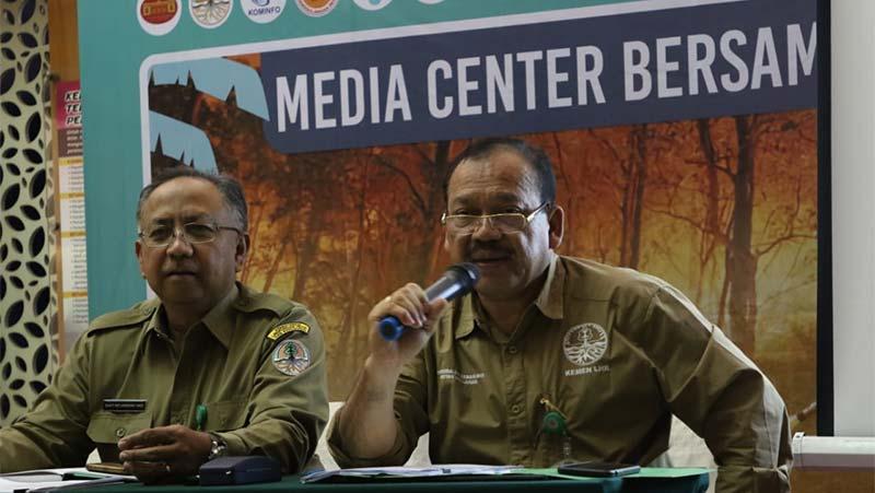Luas Hutan dan Lahan yang Terbakar Meningkat 160 Persen di September