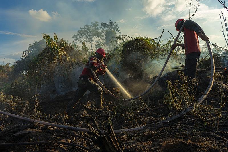 Petugas  Manggala Agni dari KLKH Melakukan Upaya Pemadaman Lahan Gambut