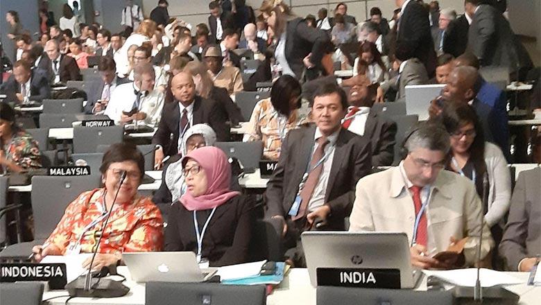 Bonn Climate Change Conference sebagai Langkah Menuju COP 25 dan Pelaksanaan Kesepakatan Paris