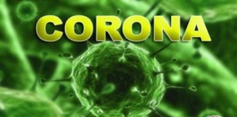 Virus Corona Cina Telah Menyebar ke Jepang