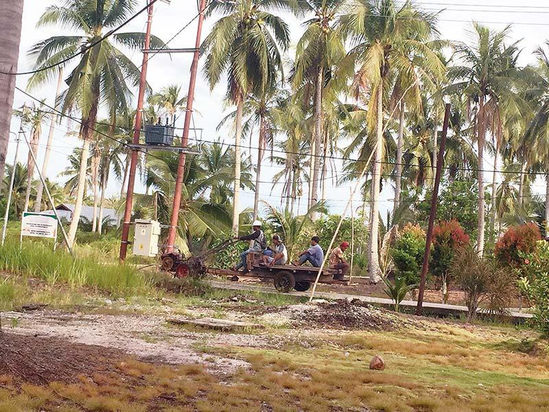 Habitat Buaya dan Perhutanan Sosial 3.580 Hektare