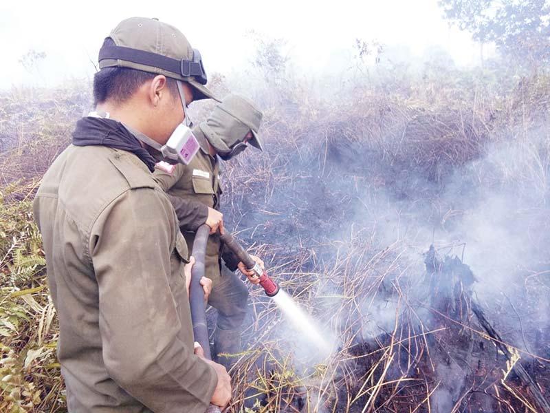1,3 Hektare Lahan di Siak Terbakar
