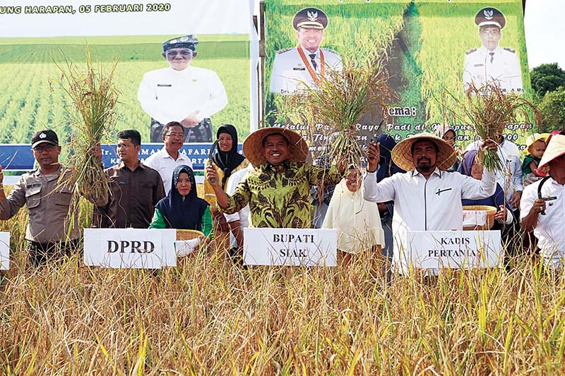 Pemkab Siak Tingkatkan Pertanian