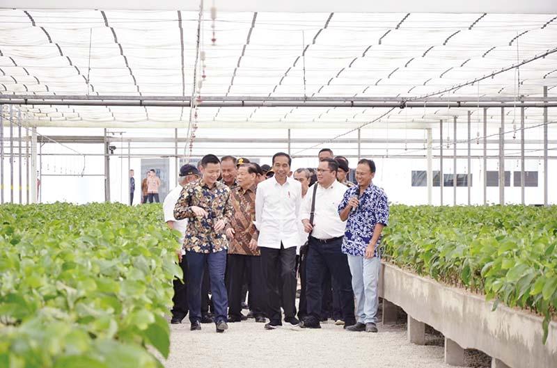 Resmikan Pabrik APR, Jokowi Puji Anderson Tanoto
