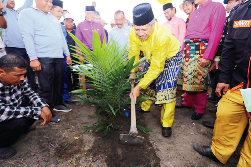 122,8 Hektare Kebun Sawit Diremajakan