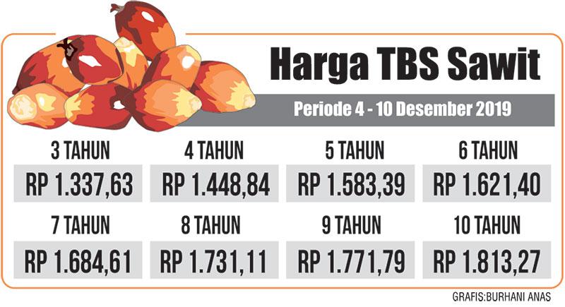 Harga TBS Kelapa Sawit Turun Tipis Pekan Ini