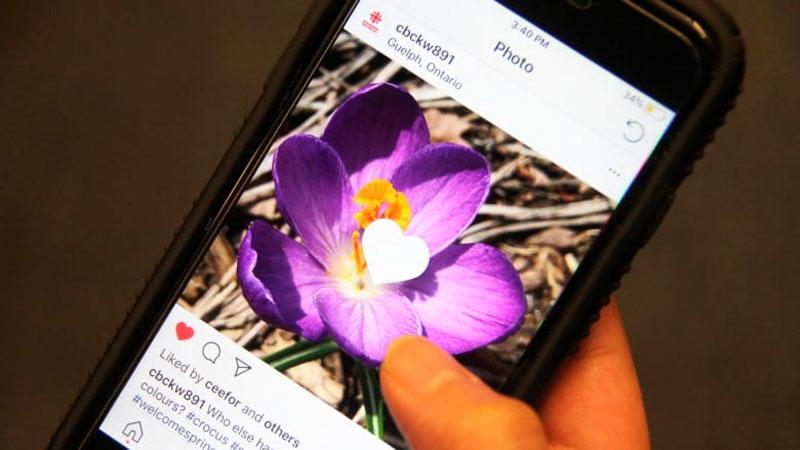 Berantas Hoaks, Instagram Luncurkan Fitur Baru