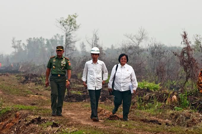 Indonesia Jadi Percontohan Dunia Dalam Pengendali Lahan Gambut