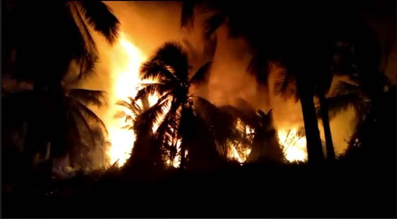 Ini Wujud Dahsyatnya Api Membakar Lahan di Riau