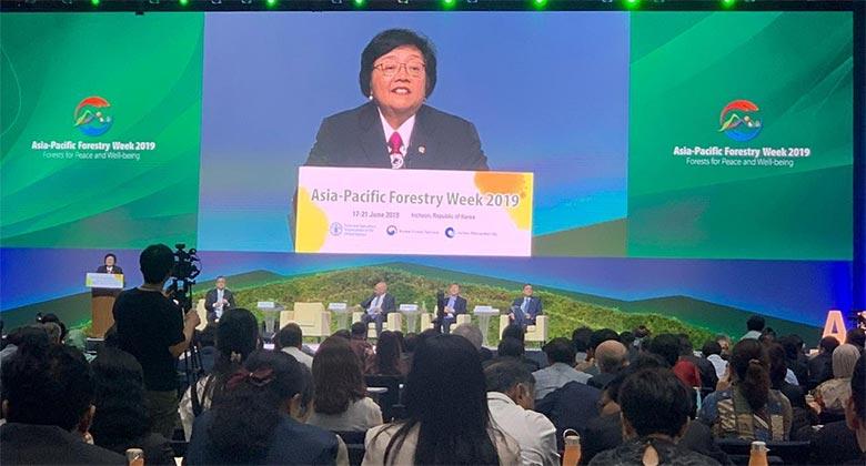 Menteri LHK Paparkan Pengelolaan Kebijakan Moratorium dan Alokasi Hutan Untuk Rakyat