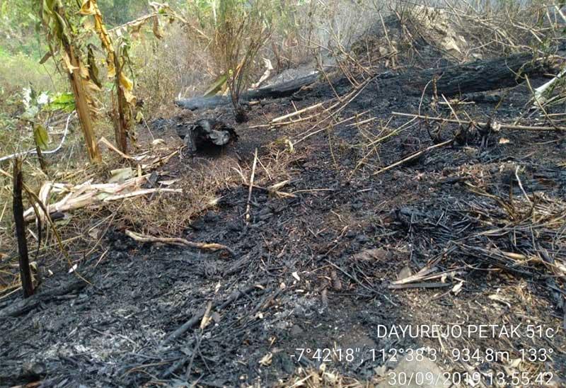 Kebakaran Lahan di Gunung Arjuno Berhasil Dipadamkan