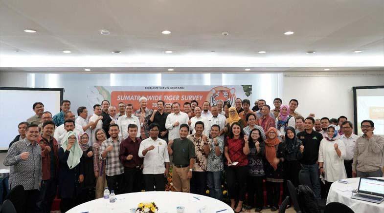 KLHK dan Mitra Kerja Luncurkan Program Survey Untuk Tingkatkan Populasi Harimau Sumatera