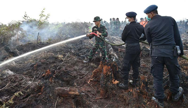Pemadaman Darat, Udara dan Modifikasi Cuaca Terus Digeber Padamkan Karhutla Jambi dan Sumsel