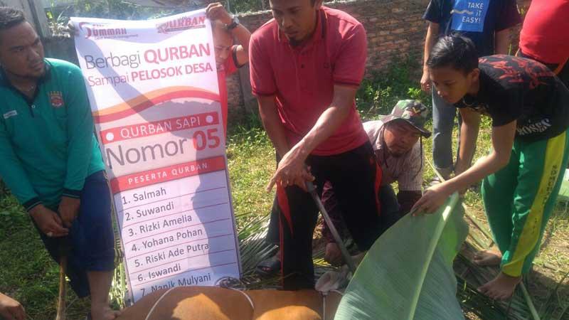 Target 1.200 Jiwa, Swadaya Ummah Siapkan Paket Qurban Sampai Pelosok