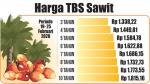 Harga TBS Kelapa Sawit Kembali Turun