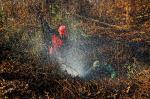 Hot Spot di Riau Kembali Bermunculan