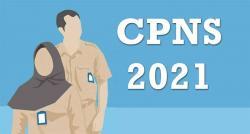 Usulan CPNS Meranti 130 Formasi