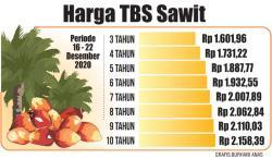 Naik, TBS Kelapa Sawit Rp2.158 per Kg