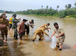 Ratusan Ribu Bibit Ikan Baung Ditebar di Kuansing