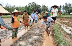 Petani Tanjung Simandolak Semai Benih Padi IP-200
