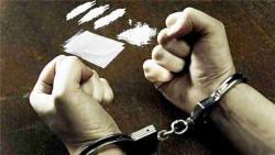 Kadernya Ditangkap Penyalahgunaan Narkoba, Gerindra Riau Bungkam