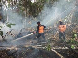 BNPB: Karhutla Riau  Capai 27.683 Ha