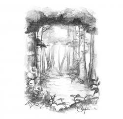 Hutan Larangan