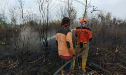 Status Siaga Darurat Karhutla Riau Resmi Diakhiri
