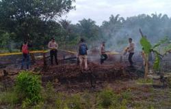 Lahan Empat Kapling Diduga Dibakar di Dekat Stadion Utama