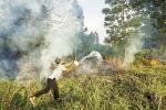 5.131 Hektare Lahan Telah Terbakar