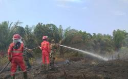 Lahan Perkebunan Warga di Rengat Terbakar