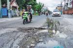Alasan Anggaran, Jalan Rusak Belum Diperbaiki