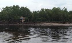 Abrasi Rusak Kawasan Wisata Bandar Bakau