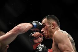 Nevada Izinkan Tinju dan UFC di Wilayahnya