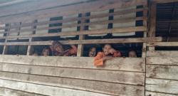 151 Kegiatan Peningkatan Sapras Pendidikan Meranti Melenggang Ditengah Covid