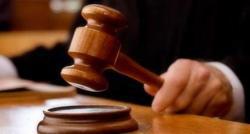 Teror Pelemparan Kepala Anjing, Yose Saputra Divonis 9 Bulan Penjara