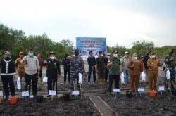Cegah Abrasi, 80 Ribu Mangrove Ditanam di Bengkalis