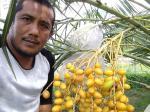Wartawan Riau Pos Juara LKTJ HLN