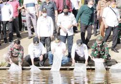 Ribuan Benih Ikan Ditabur di Sungai Melawai