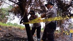 2 Hektare Lahan Terbakar di Rumbai, Dipasang Garis Polisi