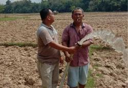 Desa Simandolak Benai Kuansing Laksanakan Tanam Padi Dua Kali Setahun