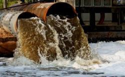 DLHK Turunkan Tim Dugaan Pencemaran Limbah di Pelalawan, Ini Hasilnya