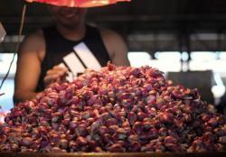 Bank Indonesia Prediksi Inflasi April 0,18 Persen