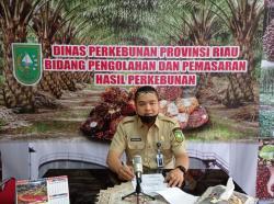 Kembali Pecah Rekor, Harga TBS Kelapa Sawit Riau Rp3.114 per Kg