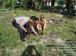 Ratusan Pohon Buah Ditanam Polsek Koto Gasib